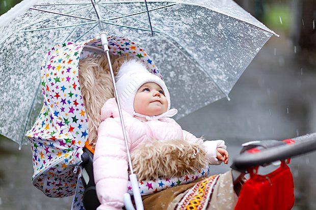 Nutrir a mente, construir o cérebro: Um belo dia de chuva!